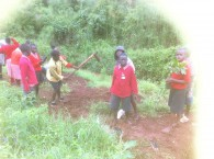 Tree planting and deworming by AAR Beckmann Trust
